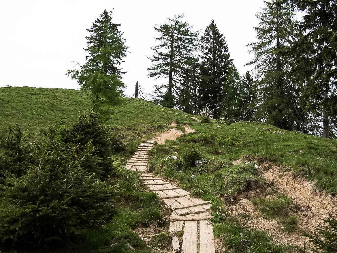 Wanderung über Holzstege